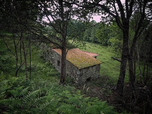 En cualquier regato de Galicia se pueden encontrar molinos hidraúlicos, en este caso en Parada de Sil (Orense, España)