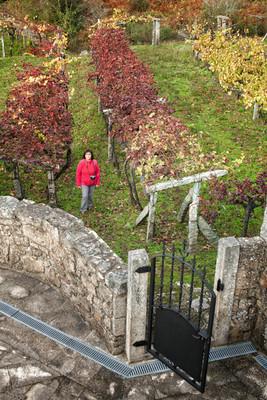 Impresionantes y otoñales vistas desde el campanario...