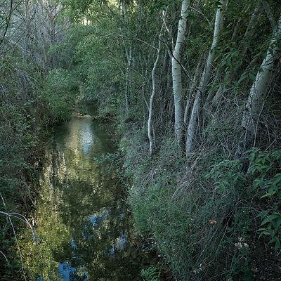 Bonito paseo el que discurre por este pequeño cañón formado por el río Cigüela, Photoperiplo lo hizo y te invitamos a hacerlo y fotografiarlo.