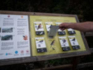 Paneles informativos en la pasarela del río Mao en Parada de Sil.