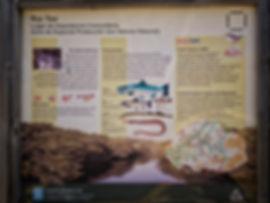 El río Tea está catalogado como espacio LIC dentro de la Red Natura 2000 como Zona de Especial Protección de los Valores Naturales. Photoperiplo estuvo allí.