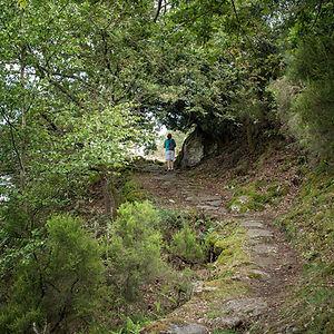 Camino de la Necrópolis rupestre de San Vitor en San Lorenzo de Barxacova en Parada de Sil (Ourense, Galicia, España). Fotografía de Photoperiplo.