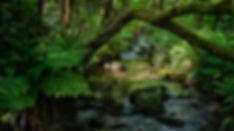 El Uhía es un río, un regato, un rego? qué más da, es un encanto... cuenta con siete molinos ya en desuso. En Esteiro, Muros (A Coruña)