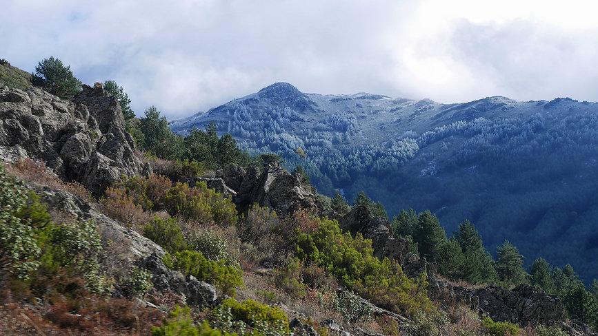 Puerto de la Quesera con las cumbres nevadas.