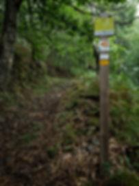 Rutas BTT de Parada de Sil en la Ribeira Sacra: tres son las que se pueden recorrer: la R3 Circular de Parada de Sil catalogada como muy difícil, la R4 Ruta de Os Torgais de dificultad fácil y la R5 Ruta de la Fábrica de la Luz de trazado marcado como difícil.