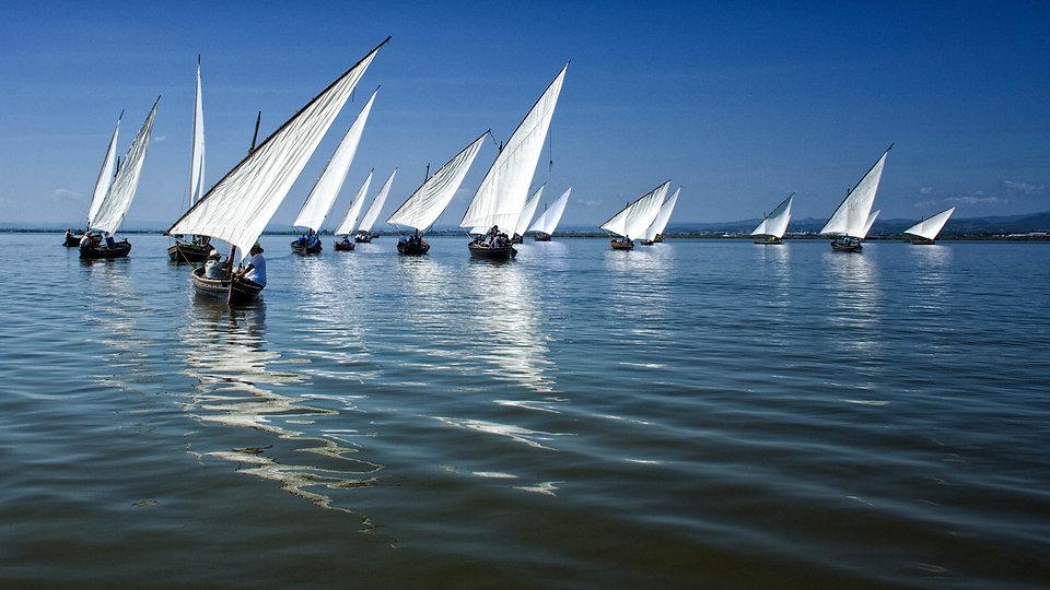 Photoperiplo viajó para fotografiar la penúltima regata de vela latina celebrada el domingo 17 de septiembre de 2017 en la Albufera de Valencia (Parc Natural de l'Albufera) y que organizó la Associació Vela Llatina els Peixcadors de Catarroja