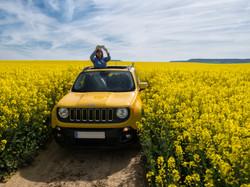 Jeep campos de Castilla
