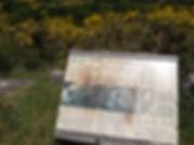Panel informativo de los petroglifos de Laxe das Rodas en Louro, Muros (A Coruña)