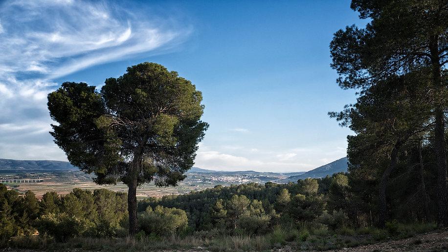 Al fondo, vista de La Font de la Figuera camino de Navalón (Enguera) bajando del Regaixo...todo en la provincia de Valencia en La Costera