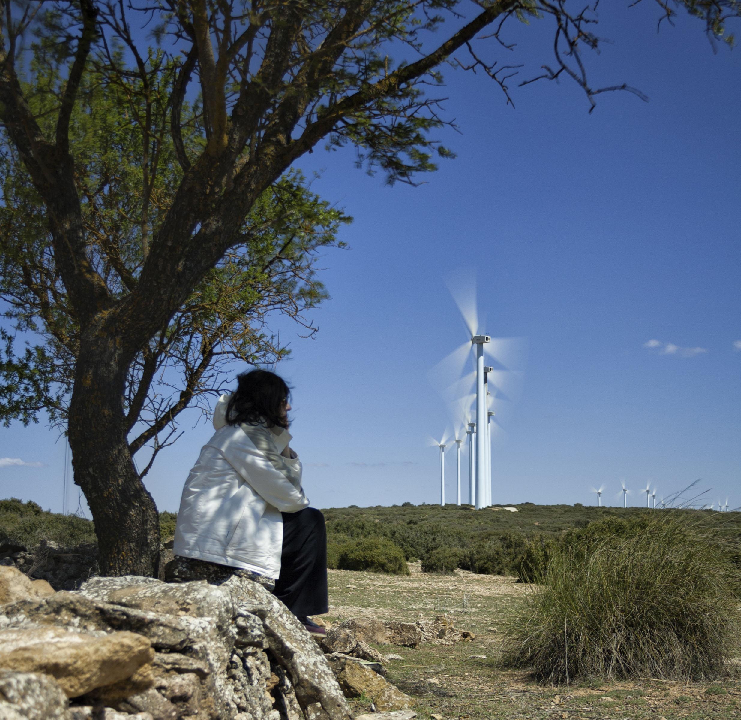 Parque eólico en Bonete