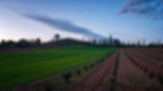 Suaves cerros conforman un paisaje encantador en la Manchuela Conquense (Castilla la Mancha) en Olmedilla y en Buenache de Alarcón. Photoperiplo te muestra con estas fotos que ha mucho qué ver y fotografiar.