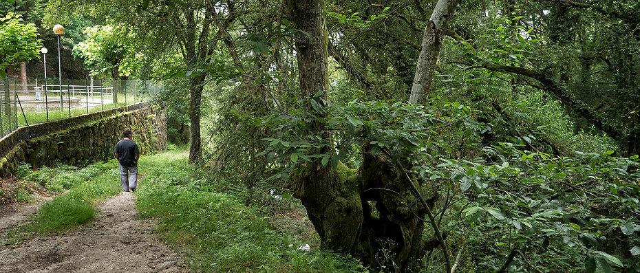 Camino hacia la Ruta do Contrabando en la que hay unos molinos hidráulicos muy cerca de Luintra. Photoperiplo anduvo por allí fotografiando este interesante paraje de la Ribeira Sacra.