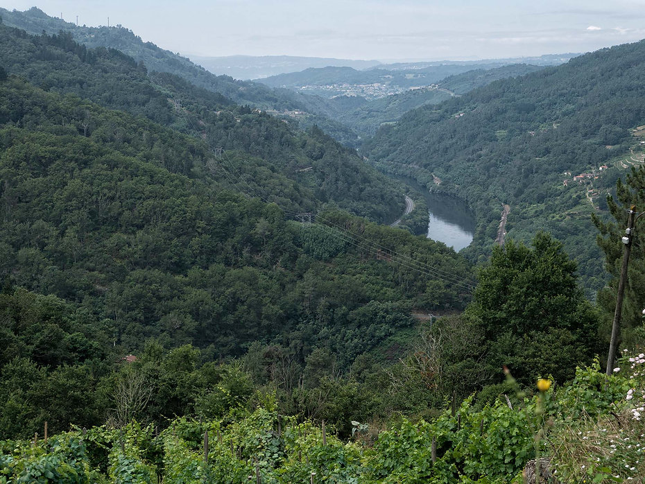 Vista del Miño camino de Ourense desde Pena do Chao en Nogueira de Ramuín. Foto de Photoperiplo.
