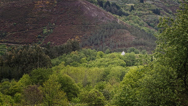 Entre el bosque destaca la iglesia de San Salvador en Negueira de Muñiz en Lugo, un buen sitio para viajar y fotografiar