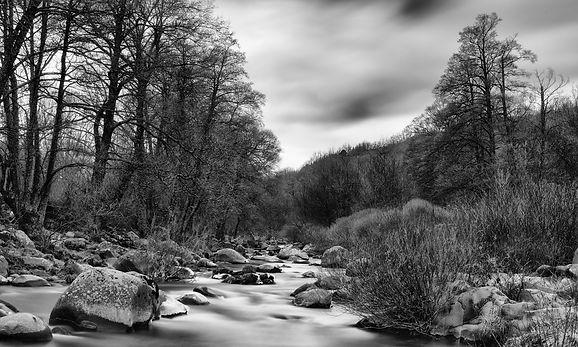 Desde el puente de Navalperal de Tormes, un día gris invita al blanco y negro...