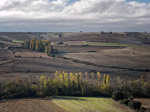 También merece la pena venir a Vega de Santa María (Ávila) a contemplar sus paisajes, cada época del año con sus tonos, sus matices...Photoperiplo lo hizo, nos acompañas?