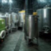 En Pieiga, en Negueira de Muñiz (Lugo) la Bodega Sidrón con sus vinos DPieiga blancos y tintos son un referente en la comarca del Navia