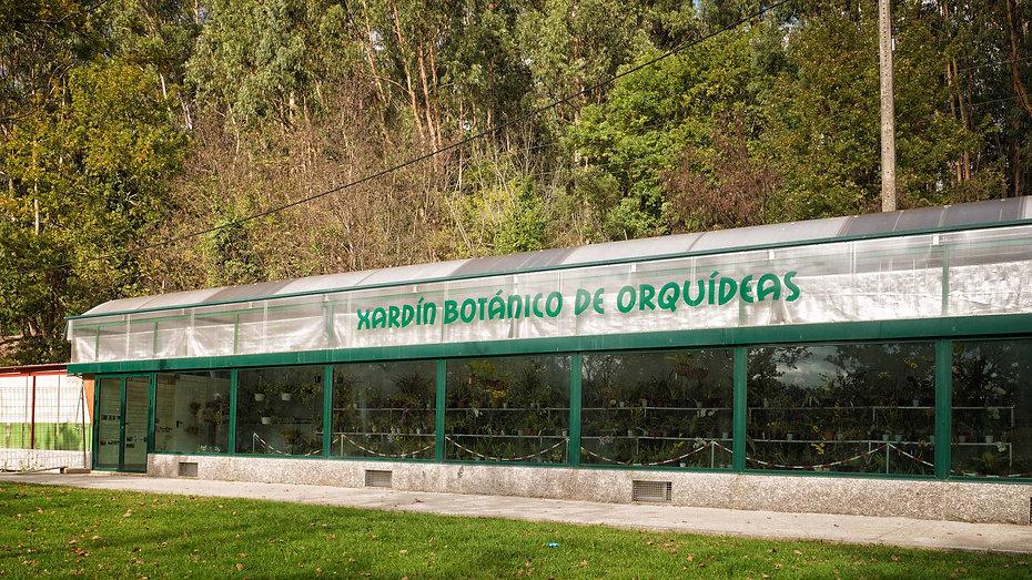 El orquideario del Parque de A Canuda en Salvaterra de Miño (Pontevedra) reúne un buen número de ejemplares de estas delicadas y fotogénicas plantas. Photoperiplo estuvo fotografiando allí y también hizo alguna foto de 360º