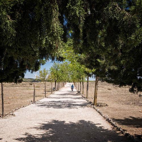 Un bonito paseo conociendo la historia de Segóbriga con Photoperiplo.
