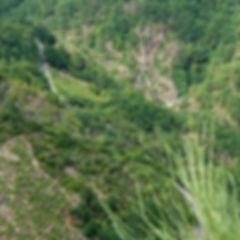 Desde la Necrópolis de San Vitor en San Lorenzo de Barxacova (Parada de Sil, Ourense, Galicia, España) las vistas son espectaculares, a nuestros pies el Cañón del río Mao y la pasarela de madera que lo recorre. Increíbles paisajes de la Ribeira Sacra en esta zona del Sil. Photoperiplo te aconseja con fotos qué ver, qué hacer, qué fotografiar...