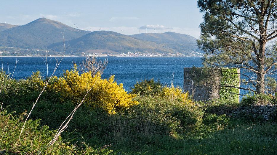 Vista del molino de viento en Santa Catalina en Tal, Muros (A Coruña) al fondo, al otro lado de la ría de Muros Noia, Porto do Son