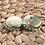 Thumbnail: Tutup kaleng silver crop
