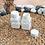 Thumbnail: Botol plastik PET 60 kapsul tablet kotak putih susu