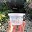 Thumbnail: THINWALL BOWL MANGKOK BULAT 100ML CUP PLASTIK