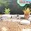 Thumbnail: TOPLES PLASTIK PET 300ML JAR CYLINDER TABUNG TUTUP ULIR