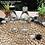 Thumbnail: Botol kaca bening 250ml RC second tutup plastik putih/hitam
