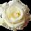 Thumbnail: White Roses