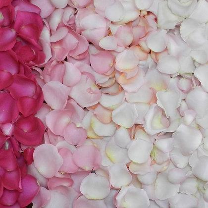 Natural Rose Petals