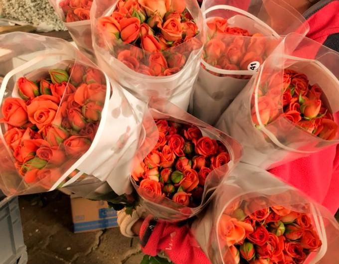 Orange Babe Bunches
