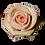 Thumbnail: Bi-Color Pink Roses