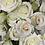 Thumbnail: Spray Roses White
