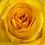 Thumbnail: Dozen Roses with Vase