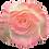 Thumbnail: Glitter Rose