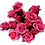 Thumbnail: Spray Roses Hot Pink