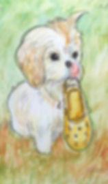 puppy small jp.jpg