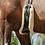 Thumbnail: LeMieux Curved (Fairfax) Girth Cover