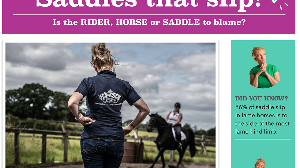 Saddles That Slip - Downloadable FREE Resource