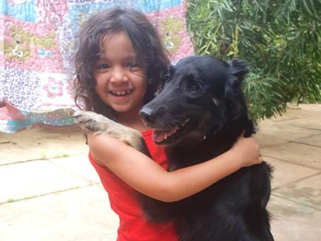 Adoção solidária: família adota cadelinha cega do abrigo da APIPA