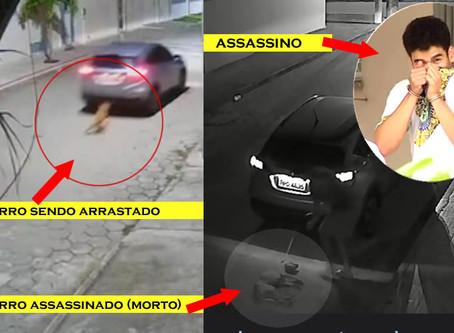 Barbárie: cachorro é amarrado em carro e arrastado até a morte no ES