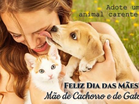 Feliz Dia das Mães! Mãe de cachorro e de gato