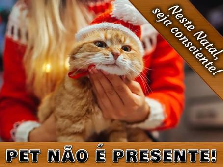 Pet não é presente: faça uma adoção consciente