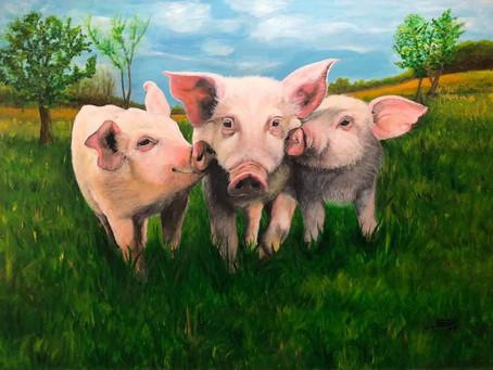 Veganismo e amor: artista alemã defende fim do consumo de animais