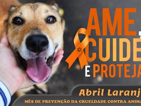 Abril Laranja: prevenção da crueldade contra animais