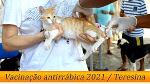 Vacinação antirrábica em Teresina inicia em 30 de outubro