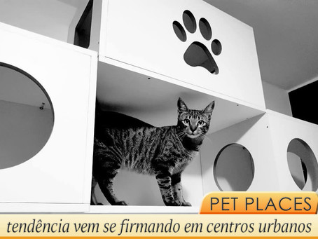 Pet place: ambiente pensado para o conforto de cães e gatos