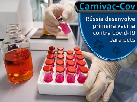 Carnivac-Cov: primeira vacina contra Covid-19 para animais de estimação